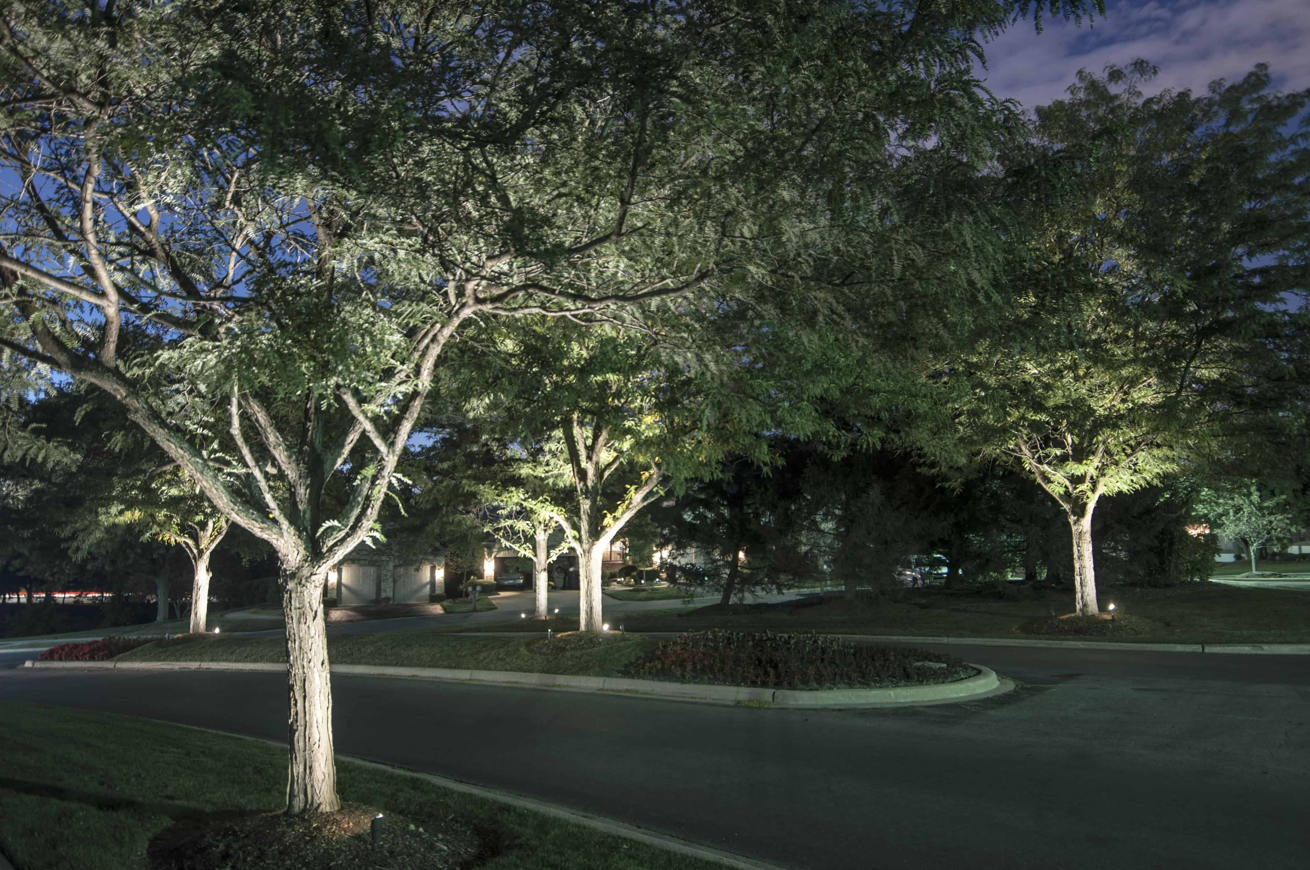 Tree lighting outdoor lighting in chicago il outdoor for Outside landscape