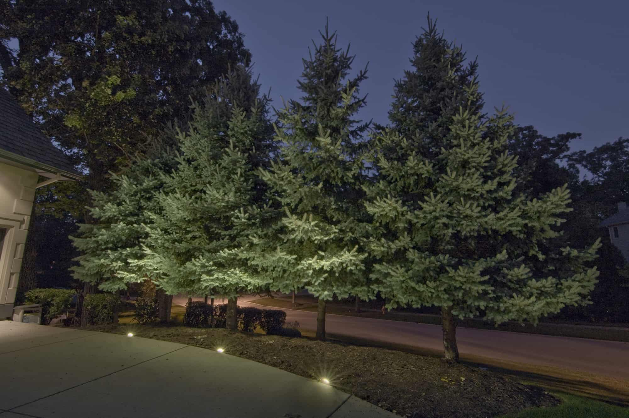 Tree lighting outdoor lighting in chicago il outdoor accents naperville tree lighting aloadofball Image collections